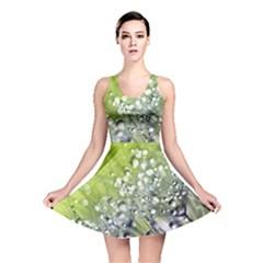 Dandelion 2015 0714 Reversible Skater Dresses