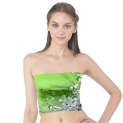 Dandelion 2015 0715 Women s Tube Tops