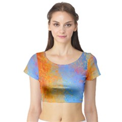 Hot and Cold Short Sleeve Crop Top