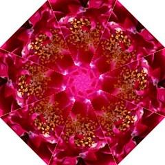 Red Rose Folding Umbrellas
