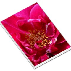 Red Rose Large Memo Pads