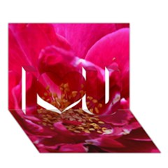 Red Rose I Love You 3D Greeting Card (7x5)