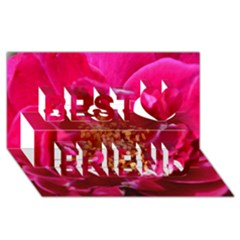 Red Rose Best Friends 3d Greeting Card (8x4)