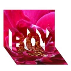 Red Rose BOY 3D Greeting Card (7x5)