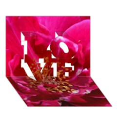 Red Rose Love 3d Greeting Card (7x5)