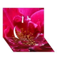 Red Rose Apple 3D Greeting Card (7x5)