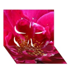 Red Rose Clover 3D Greeting Card (7x5)