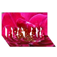 Red Rose BEST SIS 3D Greeting Card (8x4)