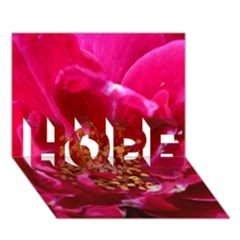 Red Rose HOPE 3D Greeting Card (7x5)