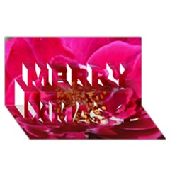 Red Rose Merry Xmas 3d Greeting Card (8x4)