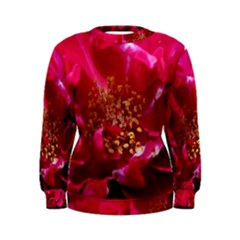 Red Rose Women s Sweatshirts