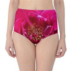 Red Rose High-Waist Bikini Bottoms