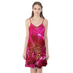 Red Rose Camis Nightgown