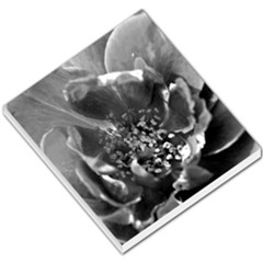 Black And White Rose Small Memo Pads