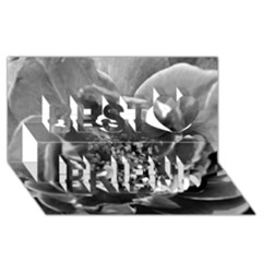 Black and White Rose Best Friends 3D Greeting Card (8x4)