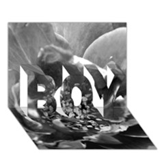 Black And White Rose Boy 3d Greeting Card (7x5)
