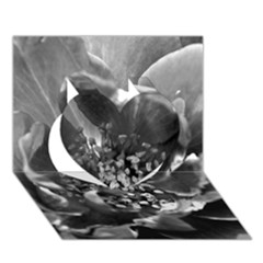 Black and White Rose Heart 3D Greeting Card (7x5)