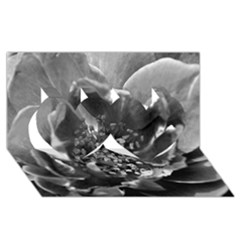 Black and White Rose Twin Hearts 3D Greeting Card (8x4)