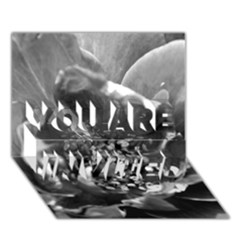Black and White Rose YOU ARE INVITED 3D Greeting Card (7x5)