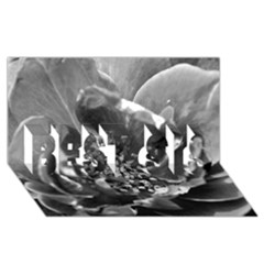 Black And White Rose Best Sis 3d Greeting Card (8x4)