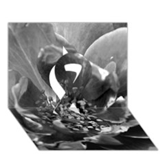 Black and White Rose Ribbon 3D Greeting Card (7x5)
