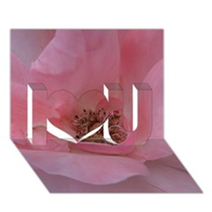 Pink Rose I Love You 3D Greeting Card (7x5)