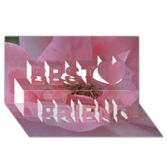 Pink Rose Best Friends 3d Greeting Card (8x4)