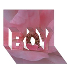 Pink Rose BOY 3D Greeting Card (7x5)
