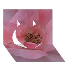 Pink Rose Heart 3d Greeting Card (7x5)