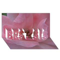 Pink Rose BEST SIS 3D Greeting Card (8x4)