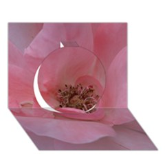 Pink Rose Circle 3D Greeting Card (7x5)