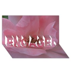 Pink Rose Engaged 3d Greeting Card (8x4)