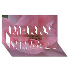 Pink Rose Merry Xmas 3D Greeting Card (8x4)