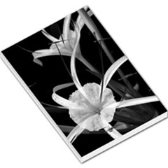 Exotic Black And White Flowers Large Memo Pads