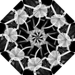 Exotic Black and White Flowers Golf Umbrellas