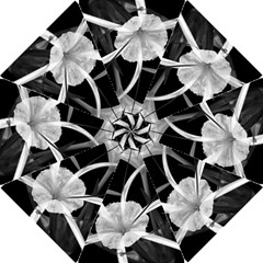 Exotic Black and White Flowers Hook Handle Umbrellas (Large)