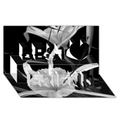 Exotic Black and White Flowers Best Friends 3D Greeting Card (8x4)