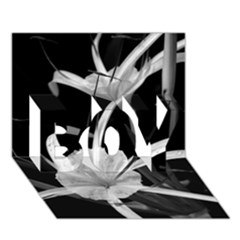 Exotic Black and White Flowers BOY 3D Greeting Card (7x5)