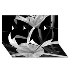 Exotic Black and White Flowers Twin Hearts 3D Greeting Card (8x4)