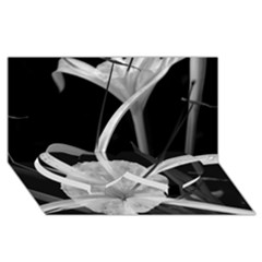 Exotic Black and White Flowers Twin Heart Bottom 3D Greeting Card (8x4)