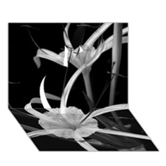 Exotic Black and White Flowers Apple 3D Greeting Card (7x5)
