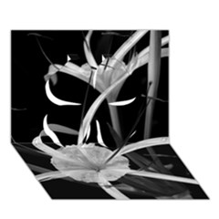 Exotic Black And White Flowers Clover 3d Greeting Card (7x5)