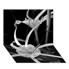Exotic Black and White Flowers Circle 3D Greeting Card (7x5)