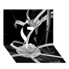 Exotic Black and White Flowers Ribbon 3D Greeting Card (7x5)