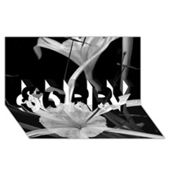 Exotic Black and White Flowers SORRY 3D Greeting Card (8x4)