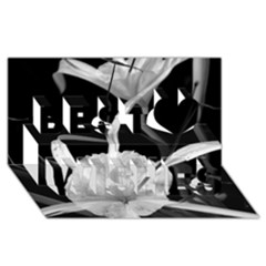 Exotic Black and White Flowers Best Wish 3D Greeting Card (8x4)