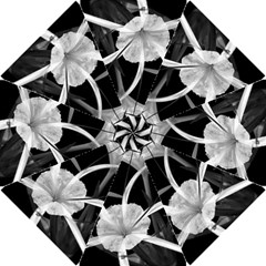 Exotic Black And White Flowers Hook Handle Umbrellas (small)