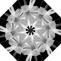 Exotic Black and White Flower 2 Straight Umbrellas