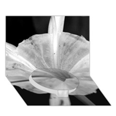 Exotic Black and White Flower 2 Circle Bottom 3D Greeting Card (7x5)