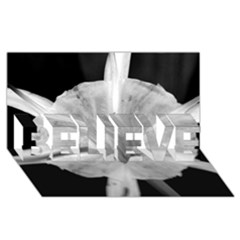 Exotic Black And White Flower 2 Believe 3d Greeting Card (8x4)